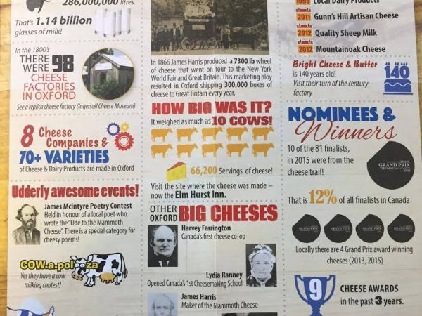 a print newsletter showcasing various dairy facts and history on the cheese trail. Woodstock is the dairy capital of Canada.